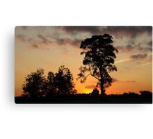 Silverdale Sunset Collection (10) Canvas Print