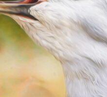 Bird Art - Look Who's Talking Sticker