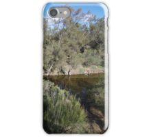 Avon River iPhone Case/Skin