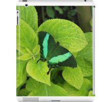 Green Butterfly iPad Case/Skin