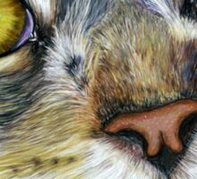 Blink Macro Cat Painting Sticker