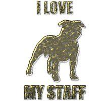 I love my staff Gold Photographic Print
