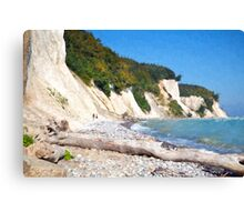 Jasmund coast Canvas Print