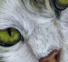 Tara - White and Tabby Cat Painting Sticker