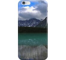 Waterfowl Reflections iPhone Case/Skin