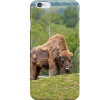 European Bison in fota wildlife park iPhone Case/Skin