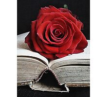 Book of Roses (vertical) Photographic Print