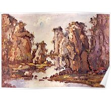 Stone Forest Poster