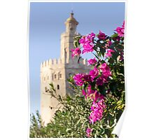 Seville - Torre del Oro between flowers Poster