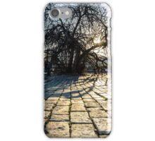 In the Realm of Light  iPhone Case/Skin