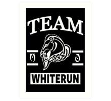 Team Whiterun Art Print