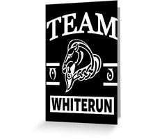 Team Whiterun Greeting Card