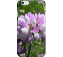 Purple Crown Vetch iPhone Case/Skin