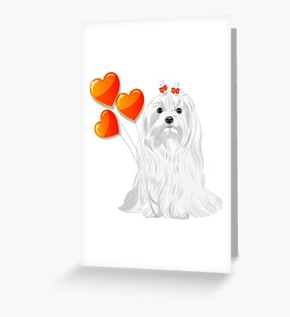 Valentine card with a dog Maltese Greeting Card