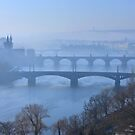 Bridges of Vltava - Prague by Hercules Milas