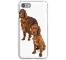 Two Irish setters iPhone Case/Skin