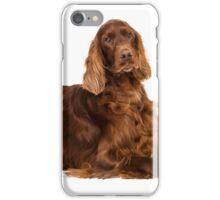 Portrait of Irish Setter iPhone Case/Skin