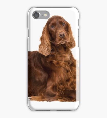 Portrait of Irish Setter iPhone Case/Skin