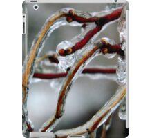 A Frosty Day in Virginia  ^ iPad Case/Skin