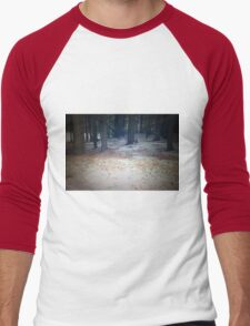 Wilnersness Snow Scene Men's Baseball ¾ T-Shirt