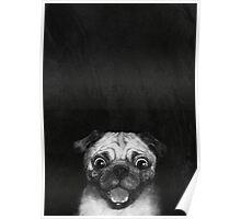 Snuggle Pug Poster