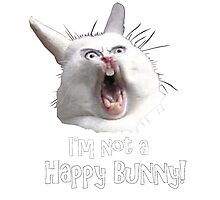 NOT A HAPPY BUNNY Photographic Print