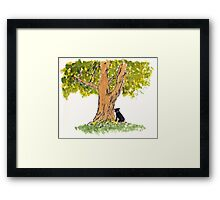Blossom at the Agnes Tree by Dan Vera Framed Print