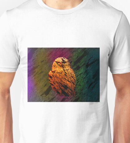 watcher of the skies Unisex T-Shirt