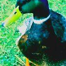 lucky duck by ariyahjoseph