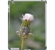 Dandilion iPad Case/Skin