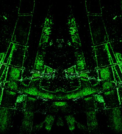 green ruin abstract mirroring something Sticker