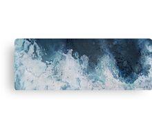 Arctic Disbursement Canvas Print