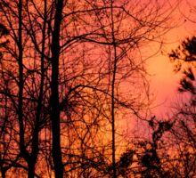 Sunset Sky Silhouette 2 Sticker