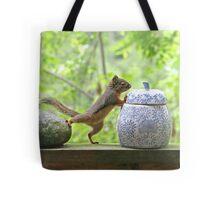 Squirrel and Cookie Jar Tote Bag