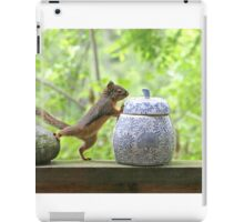 Squirrel and Cookie Jar iPad Case/Skin