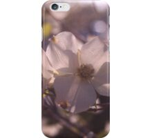 Dogwood in bloom. iPhone Case/Skin