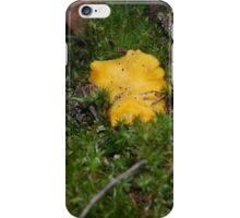 Mushrooms (chanterelle) iPhone Case/Skin