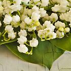 Lily Of The Valley Art by Sandra Foster