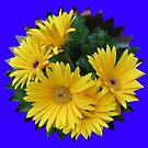 Yellow Daisies Vignette by MidnightMelody