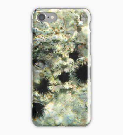 Diving (sea urchins) iPhone Case/Skin
