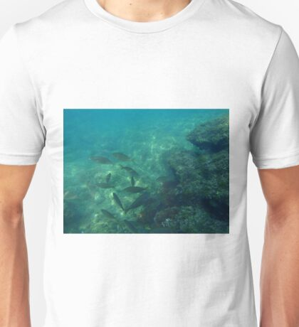 Diving (Fishes) Unisex T-Shirt