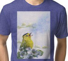 Singing the Blues Tri-blend T-Shirt