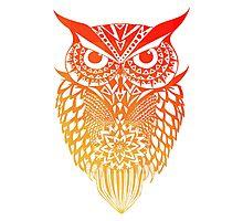 Owl orange gradient Photographic Print