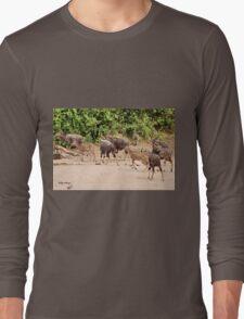 IS IT SAFE HERE - NJALA - Tragelaphus angasii Long Sleeve T-Shirt