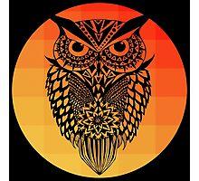 Owl orange gradient oo black bg Photographic Print