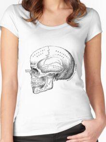 Vintage scientific illustration | Skull Women's Fitted Scoop T-Shirt