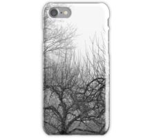 12.3.2016: Oak and Apple Trees iPhone Case/Skin