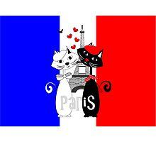 Ooh La La Cat Lovers In Romantic Paris France Photographic Print