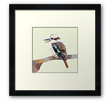 Mr Kookaburra Framed Print