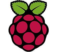 Rasberry pi symbol Photographic Print